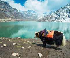 Travel To Darjeeling